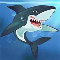 Shark Killer icon