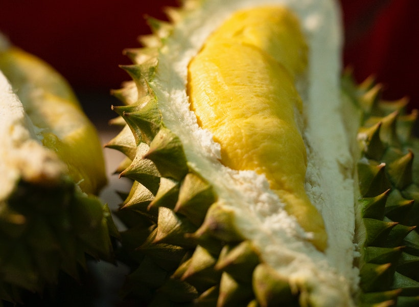 Gak Banyak Orang Tahu, Durian Juga Bermanfaat bagi Kesehatan