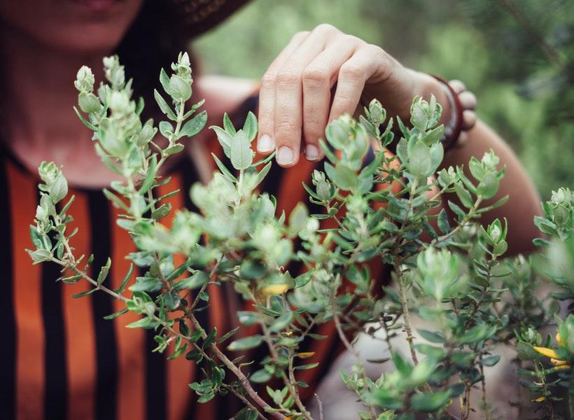 5 Manfaat Bertanam untuk Kesehatan Tubuh