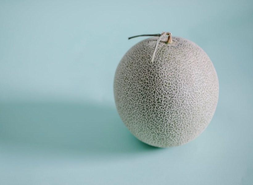 Rahasia di Balik Segarnya Buah Melon