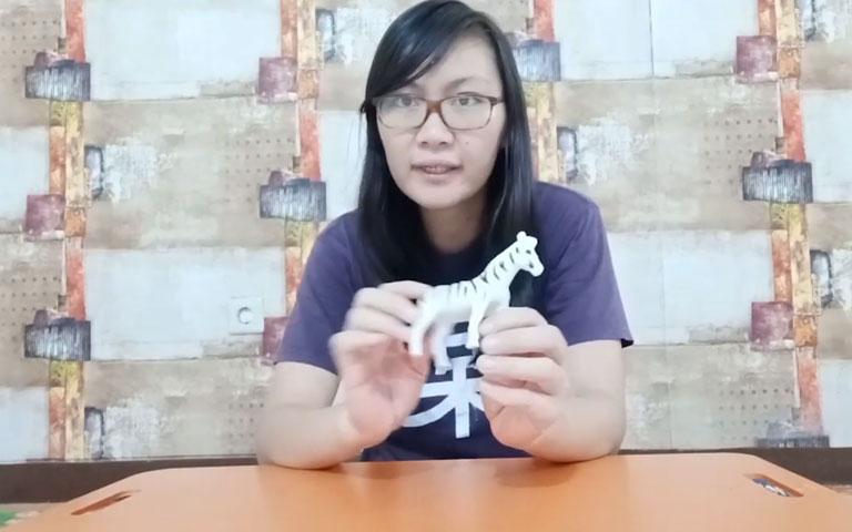 Ms. Lia Guru TK - The Characteristics of Wild Animals - Ciri-Ciri Hewan Liar