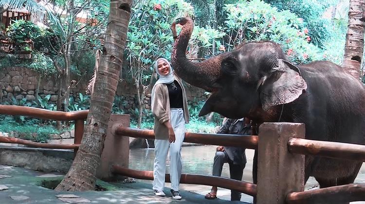Brisik.ID - Lombok Wildlife Park, Satu-satunya Taman Satwa Langka di NTB