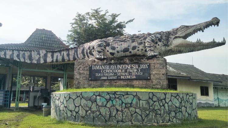 Brisik.ID - Taman Buaya Indonesia Jaya