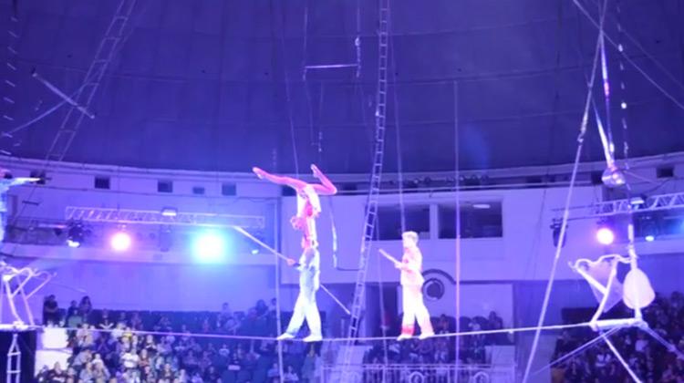 Show Moment - Circus Dangerous Skills
