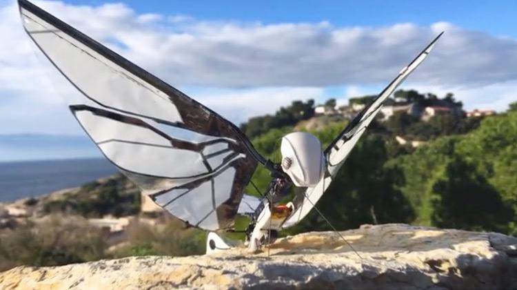 Amazing Flying Robots