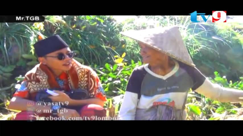 Putrayasa - Bagi-bagi uang di Repok Keri Lingsar - Lombok Barat_Program Televisi Lombok Ramadhan 2